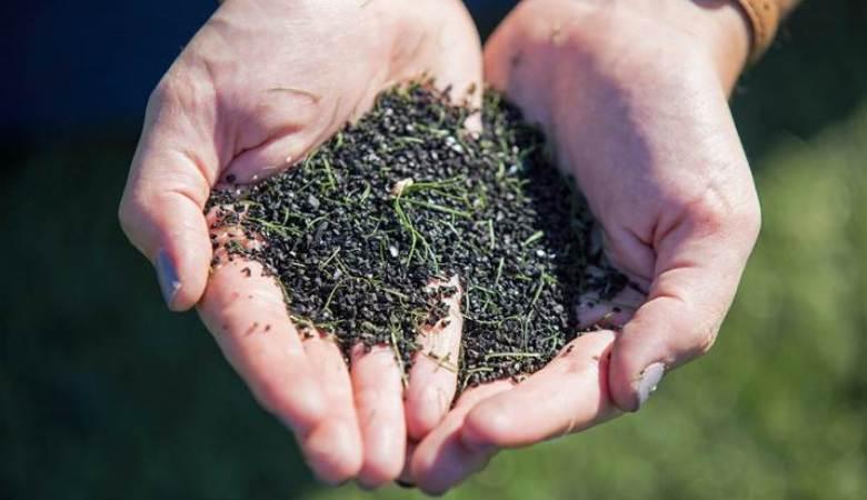 Ancaman Kanker dari Lapangan Rumput Sintetis
